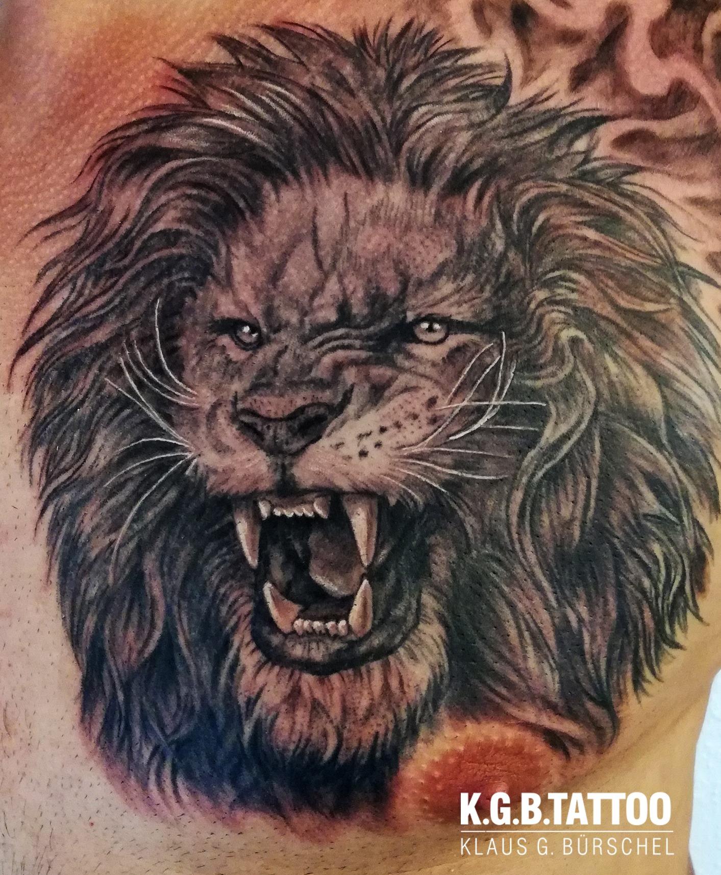 New Lion stuff
